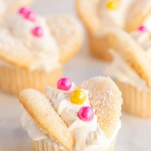 Vanilla Butterfly Cupcakes topped with whipped cream and colorful candies. Easily make these perfect spring butterfly cupcakes for any occasion!