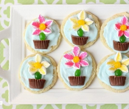 Flower Pot Cookies - Butter With A Side of Bread