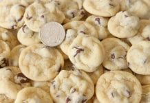Mini Chocolate Chip Cookies are teeny tiny chocolate chip cookies about the size of a quarter! Soft, chewy poppable cookies that are perfect for parties.