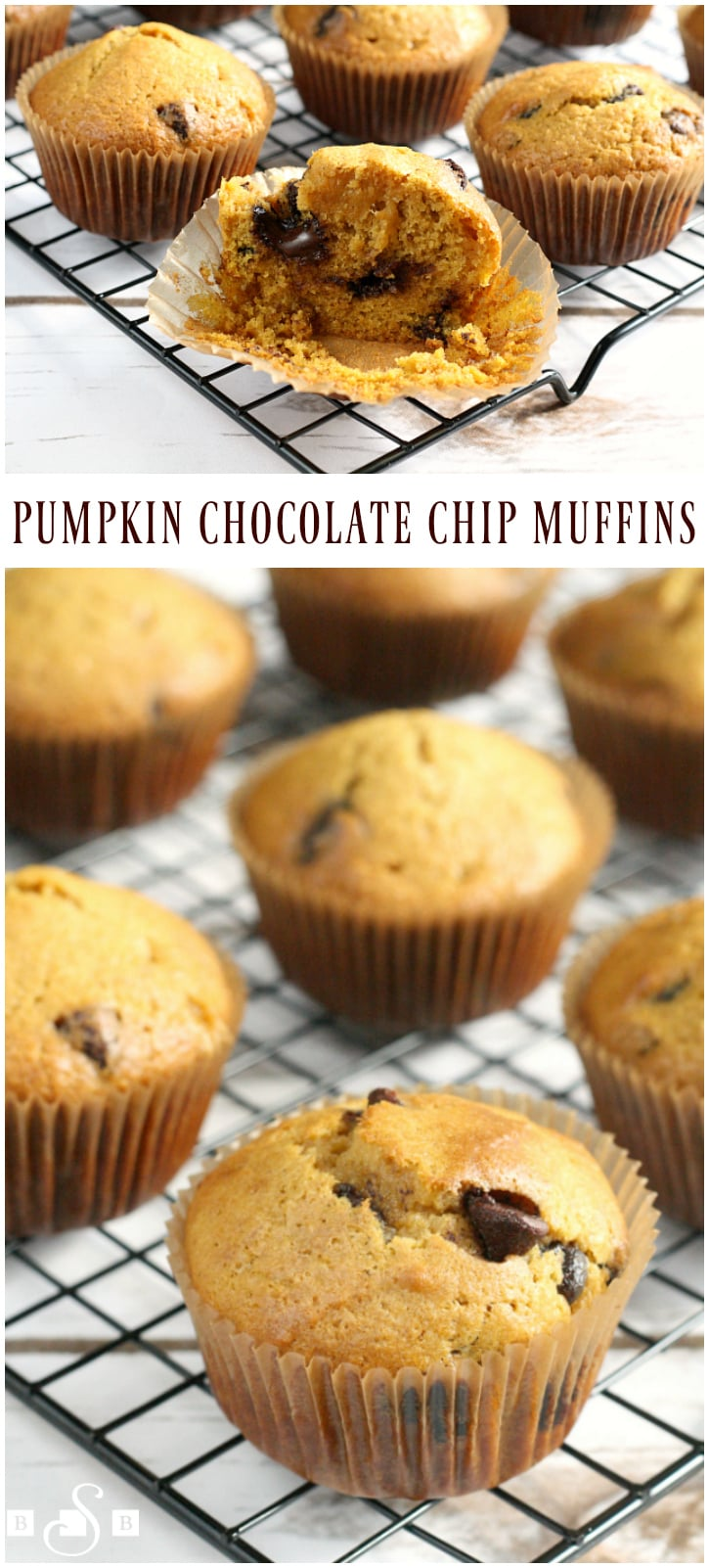 Pumpkin Chocolate Chip Muffins - Butter With a Side of Bread