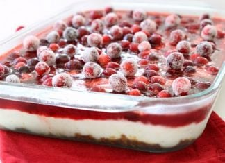 Cranberry Jello Salad made with 3 festive, delicious layers of pretzels, pudding, cranberries & Jello! Impressive, easy addition to your holiday meal.
